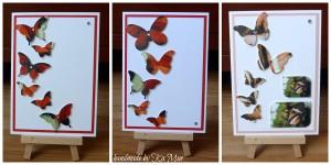 butterflies07